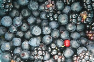 fruit-858253_640
