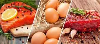 Les protéines, que faut-il savoir sur leur consommation ?